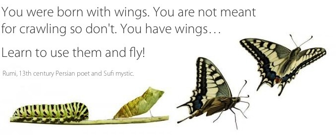 You were born with wings