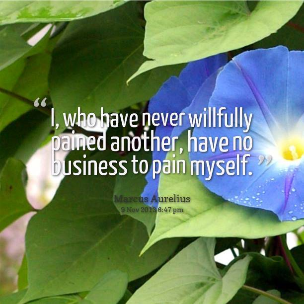 I, who have never willfully pained another, have no business to pain myself.