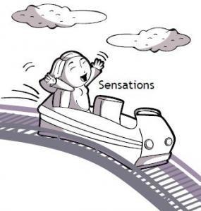 sensations-rollercoaster